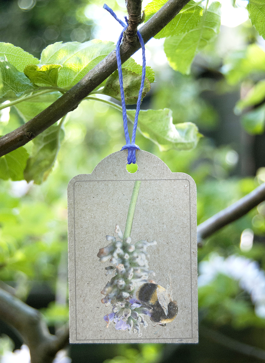 Image of gift tag featuring a bee on lavender