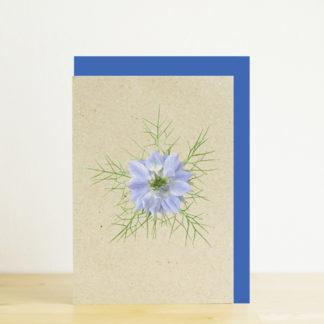 Image of greeting card featuring blue nigella photo print