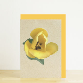 Image of greeting card featuring yellow tulip photo print