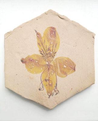 Photo of ceramic tile featuring an alstroemeria photo design