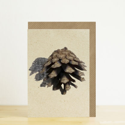 Greeting card featuring a pine cone photo design with kraft envelope