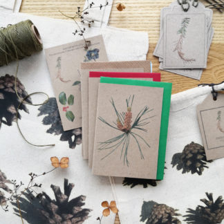 Winter botanicals gift wrap set including eco-friendly note cards, gift tags, gift bags featuring winter botanicals