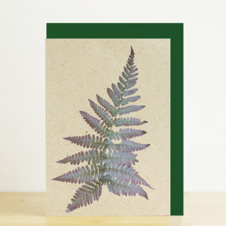 Greeting card featuring a fern print and green envelope